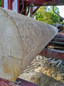 Here, one can see how precise the cut is along the entire length of the log.