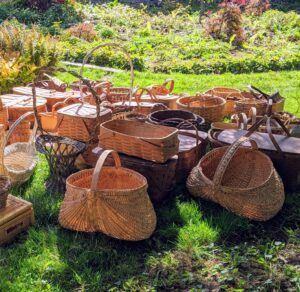 These baskets in the front are called buttocks baskets, so named for their shape. They are also called melon baskets, egg baskets, and gathering baskets.