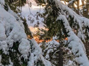 The trees were burdened with the heavy snow through the day. Here is a view as the sun began to set at Skylands. Cheryl took this image as she stood on the back porch looking southwest. Skylands is beautiful in every season, but under winter's glistening snow, it is even more magical.