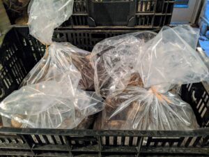 The bags are secured and then placed back into the crates and stored in my greenhouse basement. The ideal storage temperature is above freezing but below 50 degrees Fahrenheit.