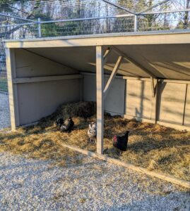 This is one f the geese hutches, where they like to sleep and lay their eggs. It was moved to another spot in the pen. The chickens seem to like it also.