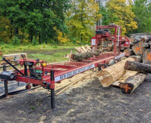 Here is Mauricio's portable sawmill with one of the smaller logs already positioned on the bed for cutting.