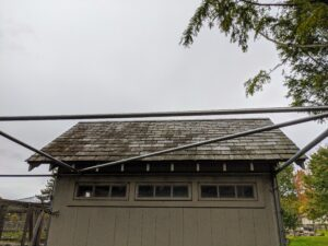 Above, these pipes will also support fencing fabric to keep aerial predators away. The pipes are attached to the coops, so there are absolutely no access points for intruders.