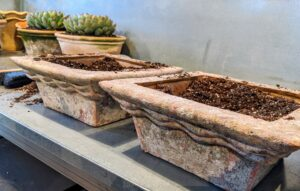 Next, Ryan will pot up a mix of succulents in these square pots.