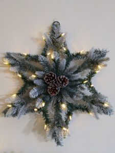 I also showed my Indoor/Outdoor Pre- Lit Star Wreath with Pinecones. This includes a push-button battery box for the 40 LED lights. It has lightly frosted foliage, and is adorned with pinecones.