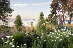 The garden is built on a bluff with spectacular views of Mt. Ranier in the distance. (Photo by Claire Takacs)