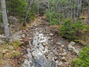 This is Jordan Stream which runs along the Jordan Stream Path. The stream starts at the south end of Jordan Pond and goes all the way to Little Long Pond near Seal Harbor.