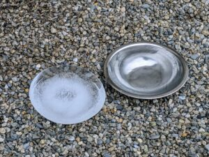 I also feel it is important to make sure all the wild birds have access to fresh water. I leave bowls of water on the ground and when they freeze, we remove the ice and replenish the supply.