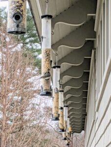 These feeders are located right under the eaves. Feeders should be set up where they are easy to see and convenient to fill. They should be placed where seed-hungry squirrels and bird-hungry cats cannot reach them, and if near a window, no more than three feet from the glass to prevent possible collisions.
