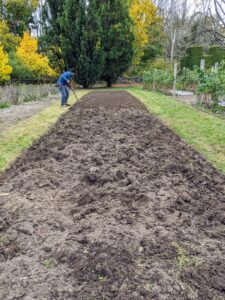 Cultivating accomplishes two things: removing any weeds from the garden bed and loosening the soil to optimize the retention and penetration of air, water and nutrients for the plants.