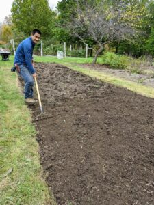 Using a hard rake, Pasang smoothes out the soil to tidy the bed and mix in the fertilizer.