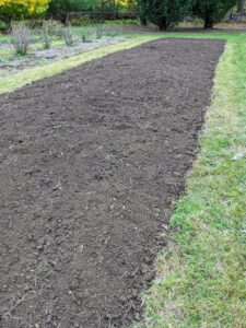 Building up the soil is the most important part of preparing a garden for growing vegetables and flowers. A deep, organically rich soil will encourage and support the growth of healthy root systems. It is now ready to be planted with our next crop of garlic.