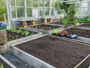 We built 16 of these wooden garden boxes last year. They fit the entire length and width of the space. Raised bed gardening allows good drainage, prevents soil compaction, and provides protection for those plants that may otherwise get trampled.