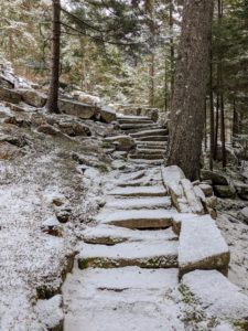 These snow-covered steps go from the guest house to my home's back porch - obviously less traveled during this time of year - not one foot print on the steps.