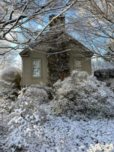 """And going back toward my home, this is the side of the Summer House with the snow covered branches of the azaleas in the foreground. Azaleas can thrive in a wide variety of growing conditions, which makes them useful in so many different landscapes. They are popularly referred to as the """"royalty of the garden"""" - long adored for their brightly colored flowers and evergreen foliage in spring."""