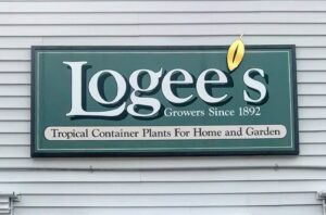 Logee's is a great source for all kinds of plants - orchids, succulents, fruit trees, exotics, etc. Once Byron took over the family business, he wanted to be sure Logee's was a place that could provide unusual tropical flowering and fragrant specimens that performed well in pots.