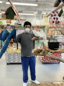 During one outing, Alexis and Ari visited Brenda's Birds in Delray Beach. Ari is a young and passionate avian enthusiast - he has many pet birds at home. All the birds seemed to know he was friendly.