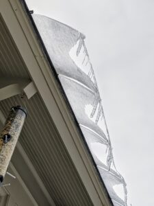 On this day, the temperatures rose to the mid-30s. Ice was melting off the roofs. I shared lots of photos of the interesting icicles that formed from this storm on my Instagram page @MarthaStewart48.