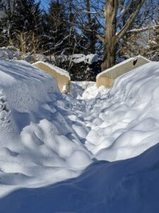 Down the center of the Summer House garden, this footpath looks pillowy with its bumps of snow.
