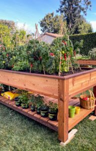 My scene shows gardening as one of the activities that can be done in one's own backyard. Gardening has become even more popular, especially during these challenging months.