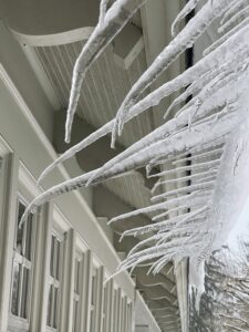These icicles on the overhang of my carport froze in an interesting formation. Go to my Instagram page @MarthaStewart48 for more images.