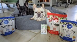 I also recently launched Martha Stewart CBD for Pet – a new line of scientifically-backed CBD wellness solutions for dogs featuring savory, gourmet-flavored soft-baked chews and oil drops. Get your dogs off to a good start too this new year!