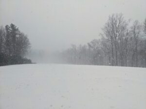Here's a look across the lower hayfield - low visibility makes it hard to see the trees at the far end.
