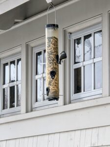 Many birds prefer tube feeders – hollow cylinders with multiple feeding ports and perches. Tube feeders attract small perching birds such as finches, goldfinches, titmice, and chickadees.