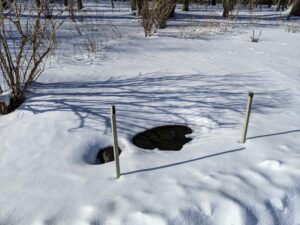 These stakes are tipped in black to indicate where the catch basin ends are, so they can be unblocked of snow if necessary.