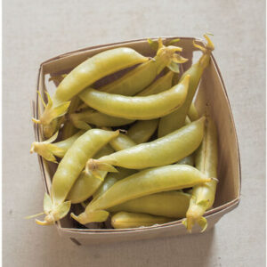 'Honey Snap' peas are gorgeous golden yellow snap peas. This variety was developed by Rod Lamborn, the son of Calvin Lamborn, the father of the snap pea and breeder of the classic 'Sugar Snap.' The pods average about three-inches long and the vines grow up to 30-inches long. (Photo courtesy of Johnny's Selected Seeds)
