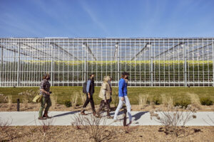 This 2.76-million-square-foot indoor farm opened late last year, and I am happy to be on its Board. Here I am walking toward the entrance with my head gardener, Ryan McCallister, and other AppHarvest Board members, Kiran Bhatraju, Anna Mason, and AppHarvest Founder and CEO Jonathan Webb. (Photo by Aaron Conway)