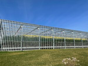 AppHarvest grows non-GMO, chemical pesticide-free tomatoes in its state-of-the-art indoor farm.