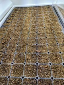 Urban Cultivator provides seed trays and other supplies, but most seed trays will fit into the unit. When planting seeds, it's best to use a pre-made seed starting mix that contains the proper amounts of vermiculite, perlite and peat moss. Seed starting mixes are available at garden supply stores.