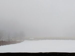 Fog reduces visibility quite a bit. In fact, it can make objects look deceiving. On the other side of this paddock, what may look like a small snow-covered roof is actually a gate to this pasture.