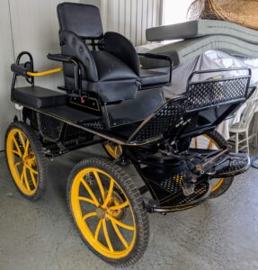 And this is a marathon carriage - suitable for both marathon and pleasure driving. It was manufactured in Poland.