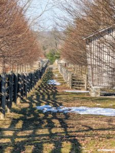 The weather here in the Northeast this week has been very pleasant. Temperatures are warm enough to melt most of the leftover snow around the farm. And it's expected to get even warmer this weekend - before a cold front brings cooler temperatures once again.
