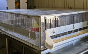 Here is the brooder set up to receive the chicks, which hatched just a few days ago.