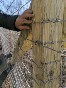 To attach the wire to the posts, Fernando hammers fence staples into the wood. These staples are made of galvanized steel which will respond well in extreme cold and hot temperatures to ensure long-lasting and maintenance-free corrosion protection.