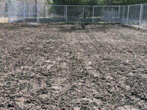 Once the soil is fertilized, it's ready for rototilling. The purpose of tilling is to mix organic matter into the soil, help control weeds, break up crusted soil, and loosen the earth for planting. You do not need to till or break up the soil very deep - less than a foot is fine.
