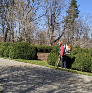 Before any edging begins, Fernando blows along the road with our STIHL leaf blower to clear any leftover dead leaves or debris. These STIHL blowers are powerful and fuel-efficient. They provide enough rugged power to tackle heavy debris while delivering lower emissions.
