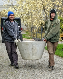 Ryan and Brian carry four of these large urns into the courtyard - they're the perfect size for the larger trees.