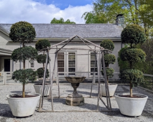 And here are all the large topiaries in their urns – one at each corner of this antique faux bois gazebo with my antique bird bath at the center. They all look so beautiful in the courtyard. I am looking forward to entertaining here this summer!