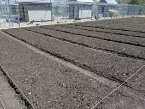 """This garden will have more than 40 beds. It takes time to build them perfectly. When building raised beds, be sure every part can be reached without standing on it. Let this be a number one """"ground"""" rule – never step on the soil within raised beds."""