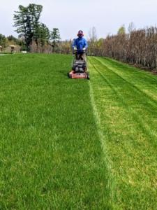 Here's Chhiring giving the area the first mow of the season. This lawn is looking so healthy.