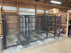 This is a new, smaller kennel I installed in my barn, across the aisle from the already existing kennel. This kennel offers two 10 by 12 foot and two 5 by 6 foot pens. In this photo, the cement is still drying.