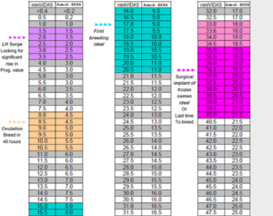 "Contrary to popular belief, breeding dogs is far more scientific and data-based than just ""breeding them."" This table shows how closely a female's levels are monitored before breeding. Reputable breeders take this process very seriously - and only breed for the betterment of the line. (Photo courtesy of ASHVET)"