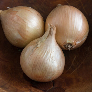 This heirloom variety is called 'Ailsa Craig.' It was introduced in 1887 by David Murray, gardener for the Marquis of Ailsa, who lived on the small island off the coast of Scotland. The skin is a pale yellow and the flesh is relatively mild and sweet. (Photo courtesy of Johnny's Selected Seeds)