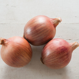 'Blush' is an easy-to-grow, long-day onion. It has brownish-pink skins, light purple rings, and very vigorous foliage. It produces bountiful harvests of 10 oz. bulbs filled with a unique, lightly sweet flavor. (Photo courtesy of Johnny's Selected Seeds)