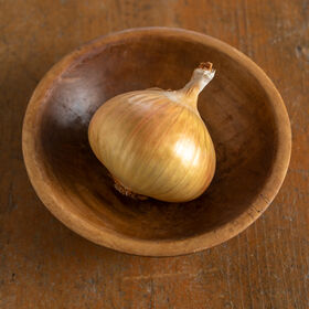 These are the popular mild yellow variety from Walla Walla, Washington. 'Walla Walla' onions are big and round with sweet, mild, juicy flesh. (Photo courtesy of Johnny's Selected Seeds)