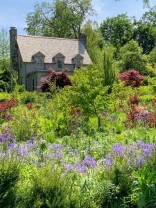 Behind my Tenant House, I designed lovely gardens of shade-loving plants that are thriving despite the removal of six giant trees a couple of years ago. Beautiful views of these gardens can be seen from the large windows of the house.